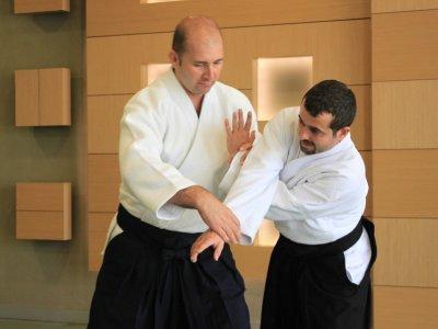 aikido, ingiltere, london, halis duran, eğitim, seminer,